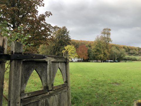 open wooden gate leading to meadow