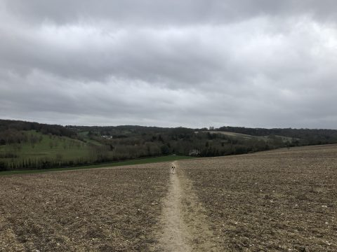 photo of footpath running down a field