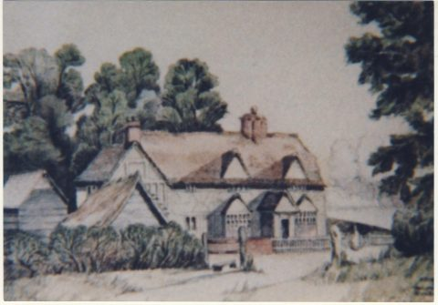 painting of old farmhouse with tall trees behind it