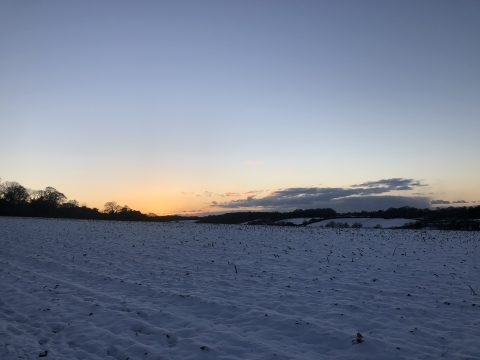 sunset over a snow covered field