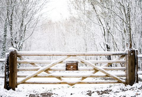 wooden five bar gate in snow
